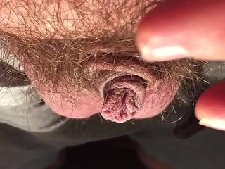 My cock Small cock to hard - balls out - growing